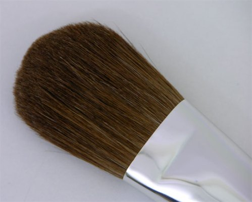 Trucco Blush Cheek Brush